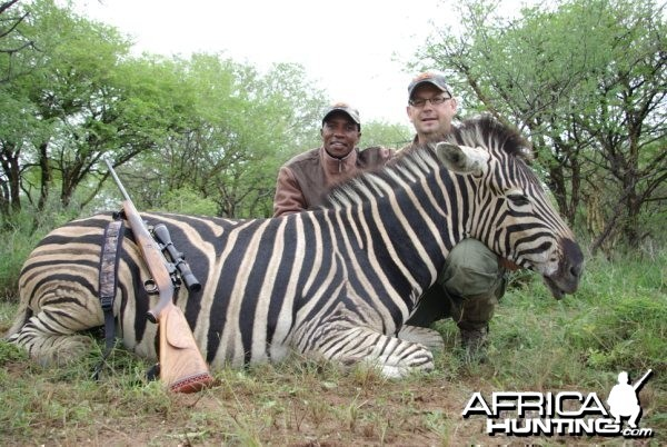 Hunting Safari in Limpopo, South Africa - Zebra