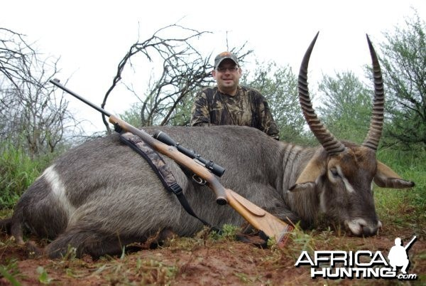 Hunting Safari in Limpopo, South Africa - Waterbuck