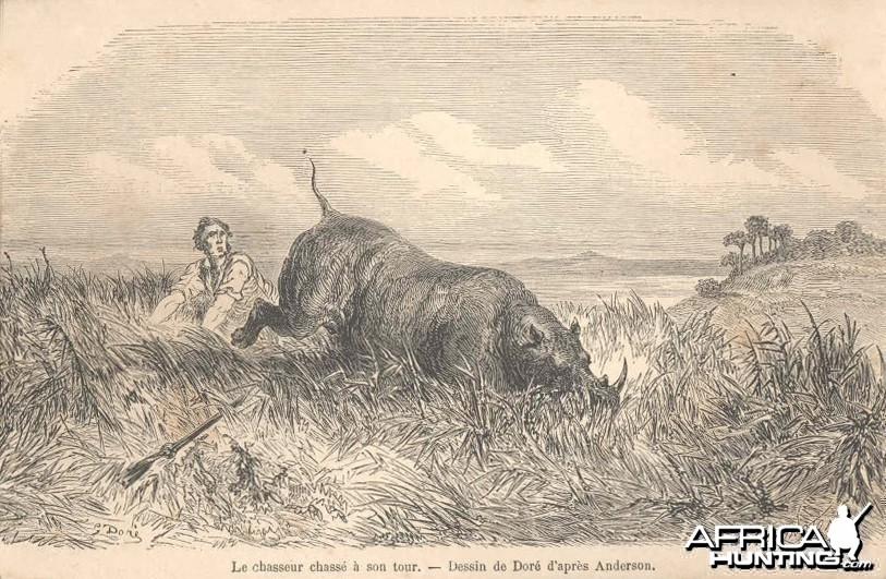 1860 Print - Hunting the Hunter Africa