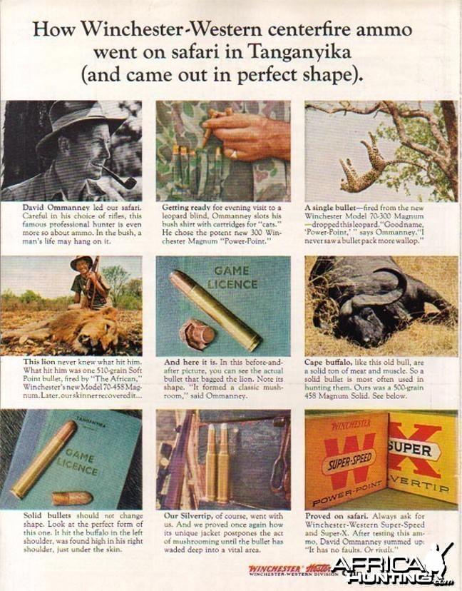 1964 Winchester Ad