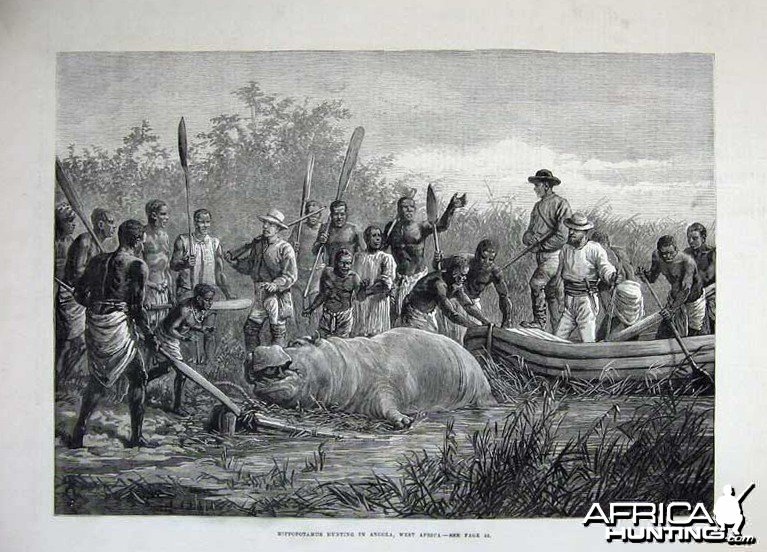 1880 - Hippopotamus Hunting in Angola, Africa