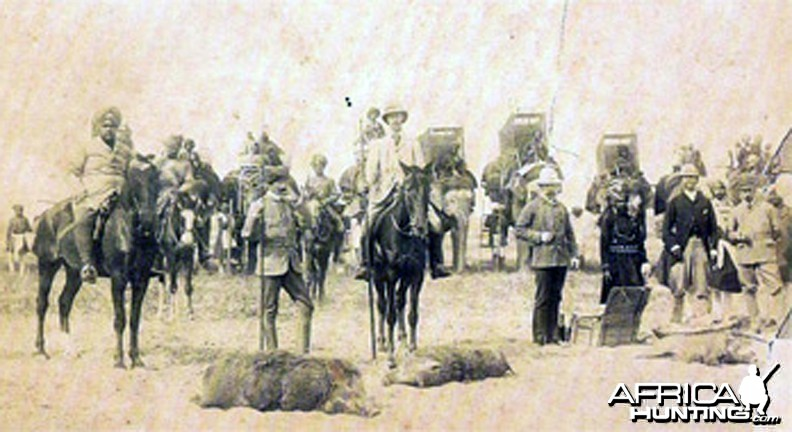 Pig Hunting India