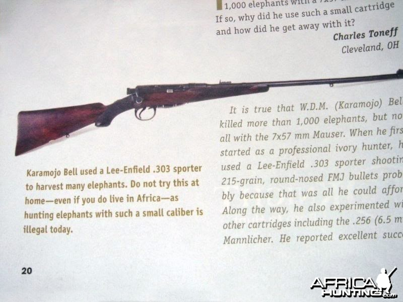 Karamojo Bell used a .303 Lee Enfield to shoot Elephants