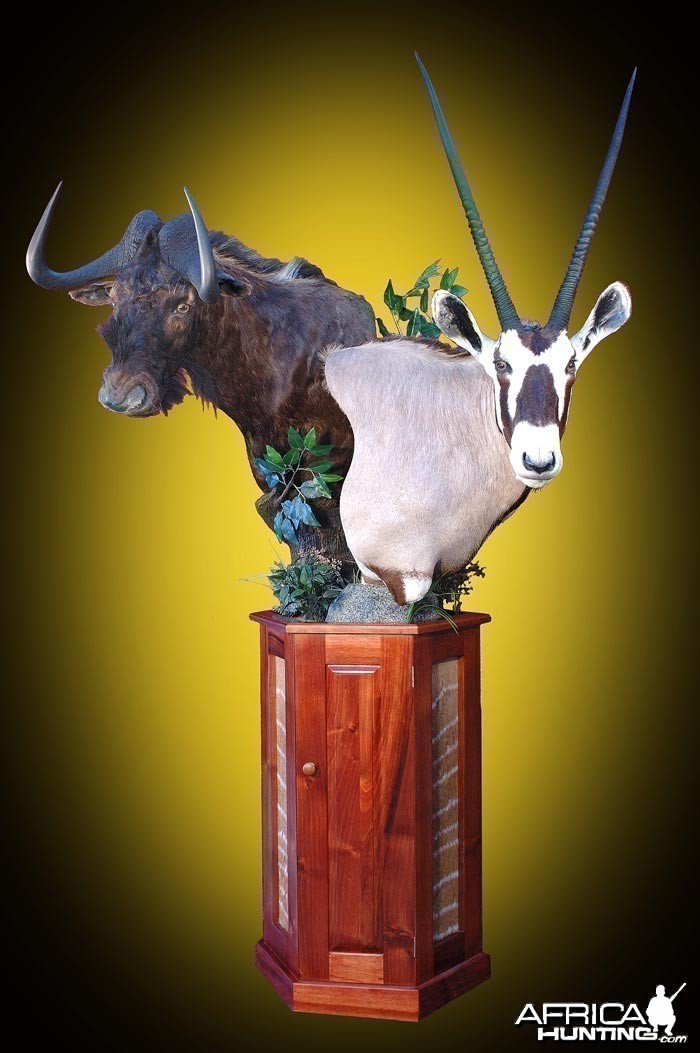 Gemsbuck and Black Wildebeest pedestal