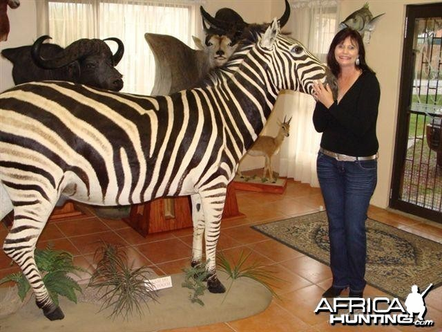 Full Mount Zebra