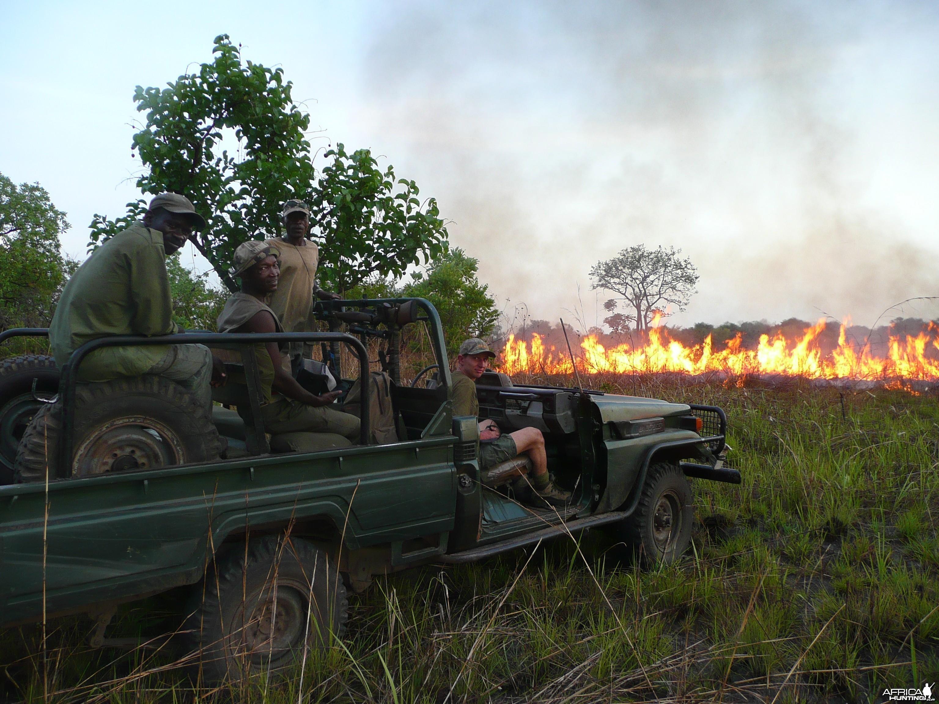 Bush Fires CAR