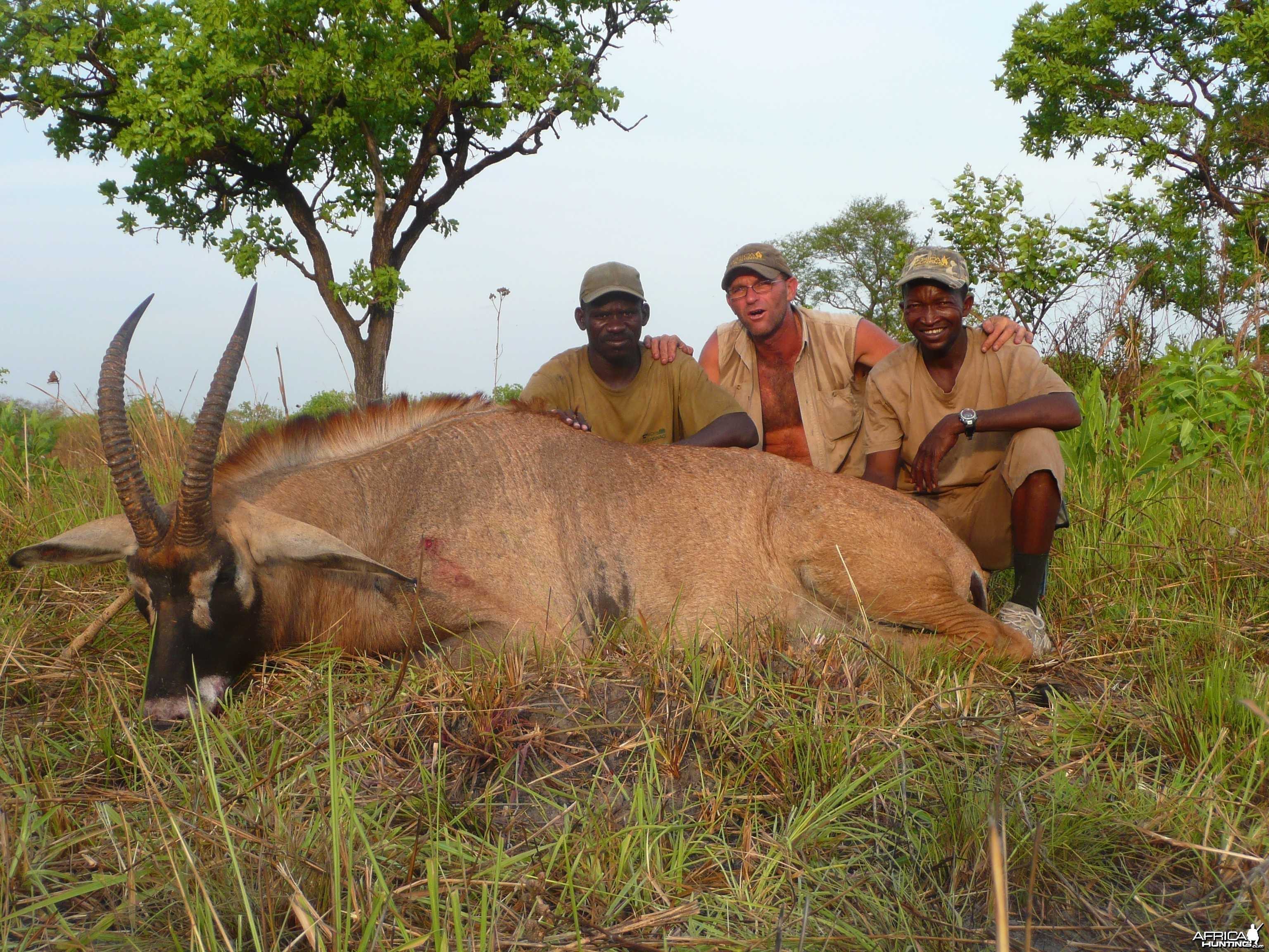 Roan bull 26' inches hunted in Central African Republic