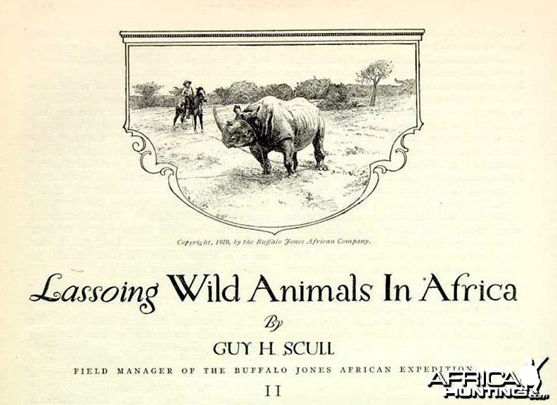 Lassoing Wild Animals in Africa