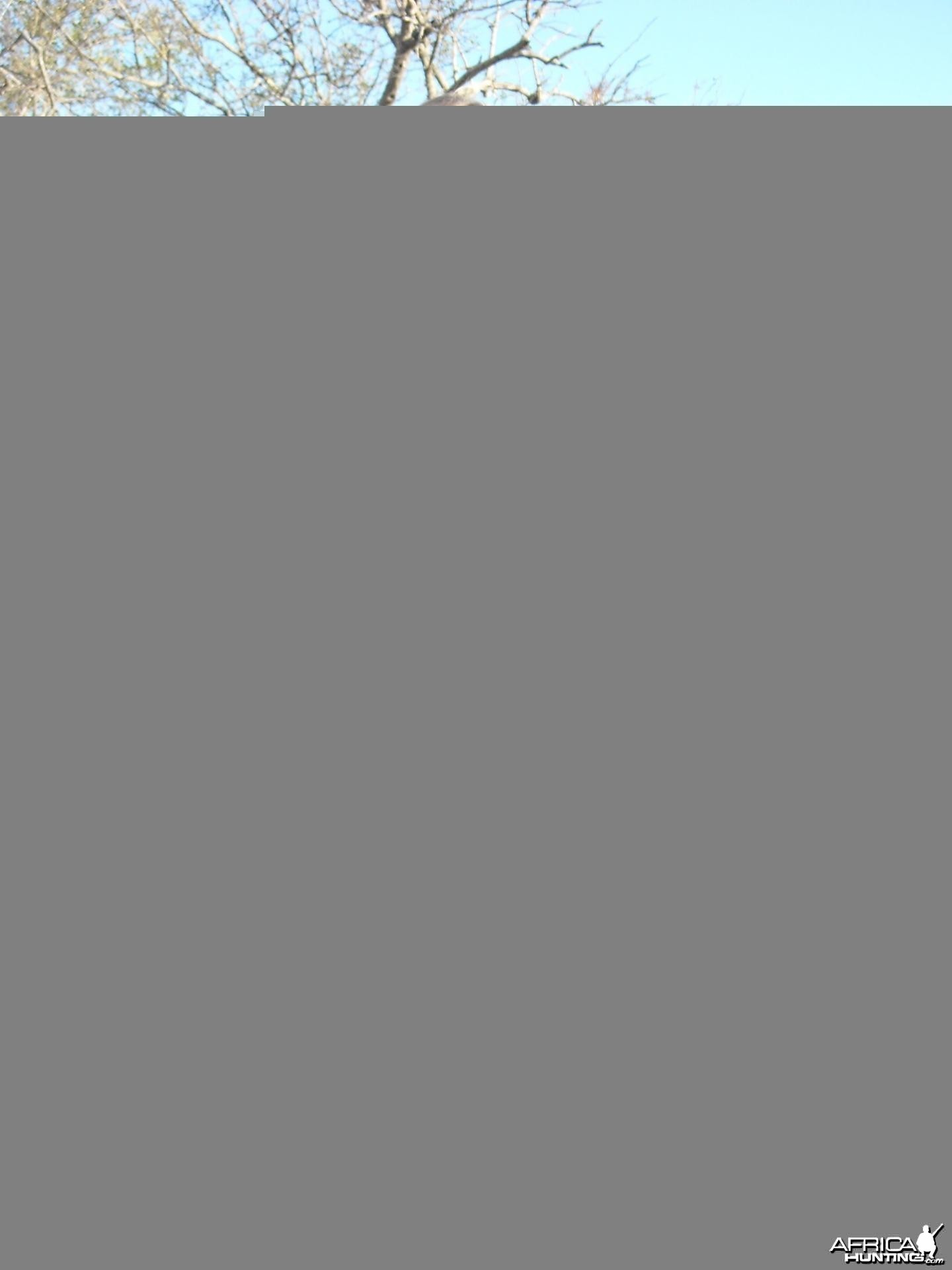 My wife with her Warthog