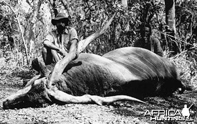Jorge Alves de Lima, Professional Hunter, with Lord Derby Eland