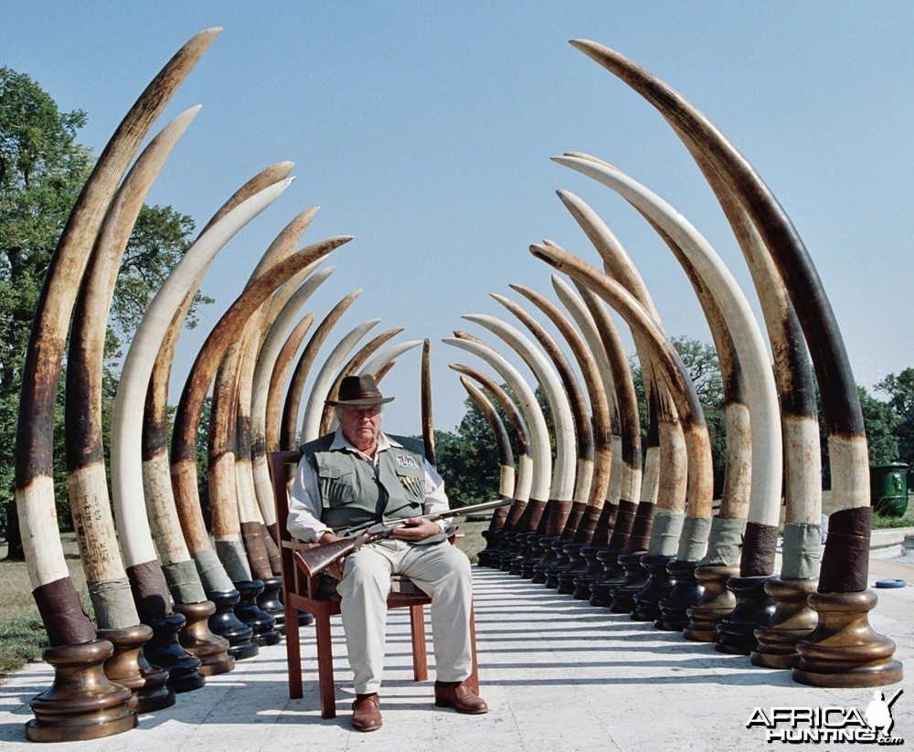 Marc Pechenart (1927-2008) with the tusks of his best 17 trophy elephants