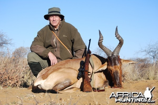 Red Hartebeest / Eden Safaris Namibia