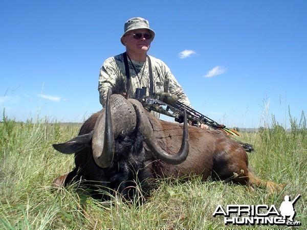 Long stalk... black Wildebeest