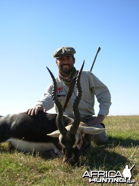 Black Buck in Argentina
