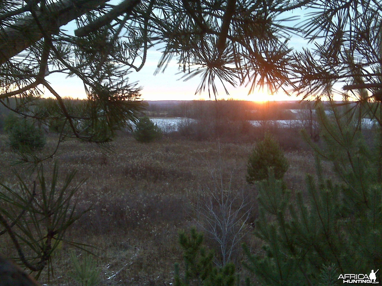 The view from my treestand on opening morning, US