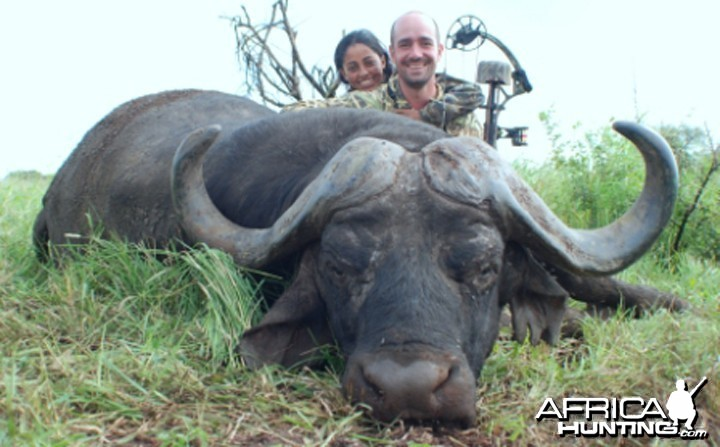 43 inches Cape Buffalo hunted in Mozambique