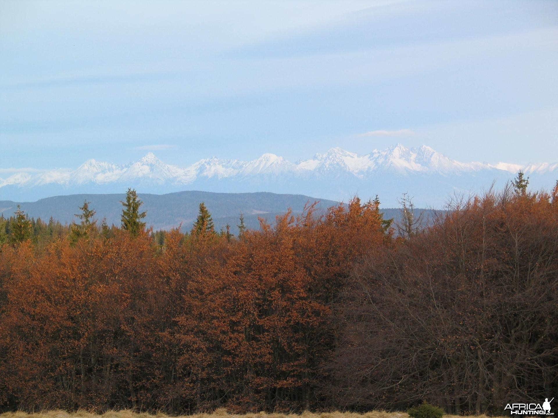 My hunting views from Slovakia