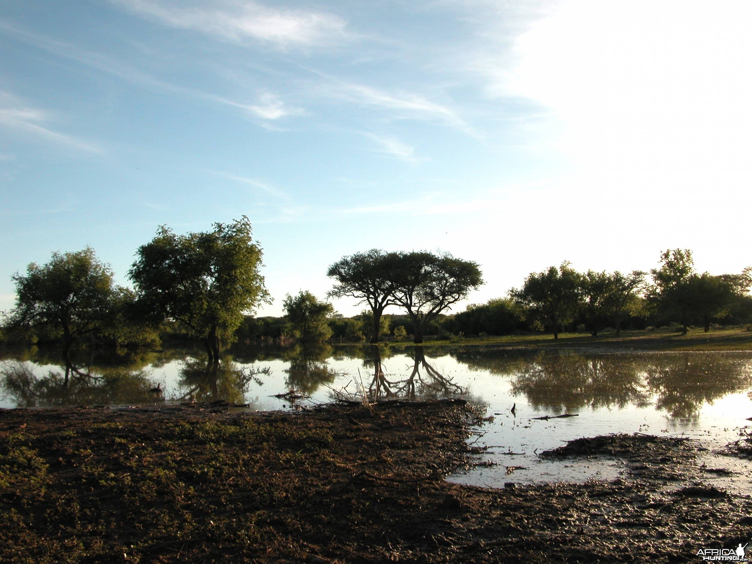 Africa Namibia Waterhole Raining Season