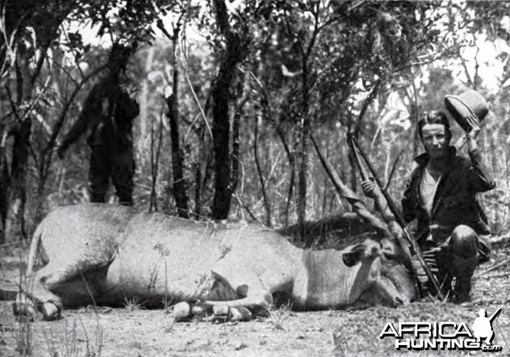 Kermit Roosevelt first giant eland shot on the Redjaf trip