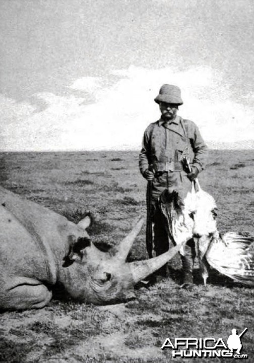 Theodore Roosevelt, rhino and bustard shot from rhino