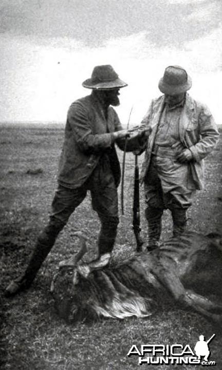 Theodore Roosevelt wildebeest