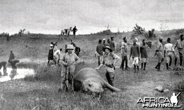 Theodore Roosevelt with hippo and bwana Engozi (Judd)