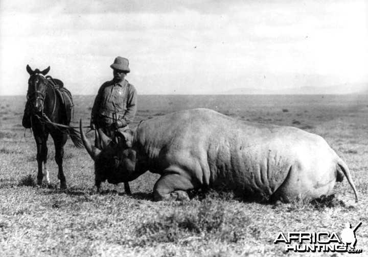 Theodore Roosevelt and his prize rhino