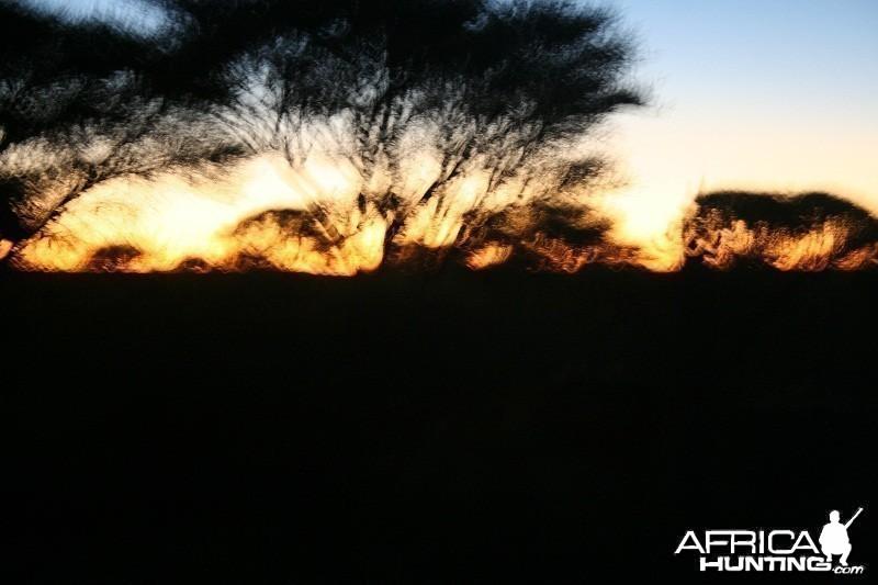 The magic of africa....