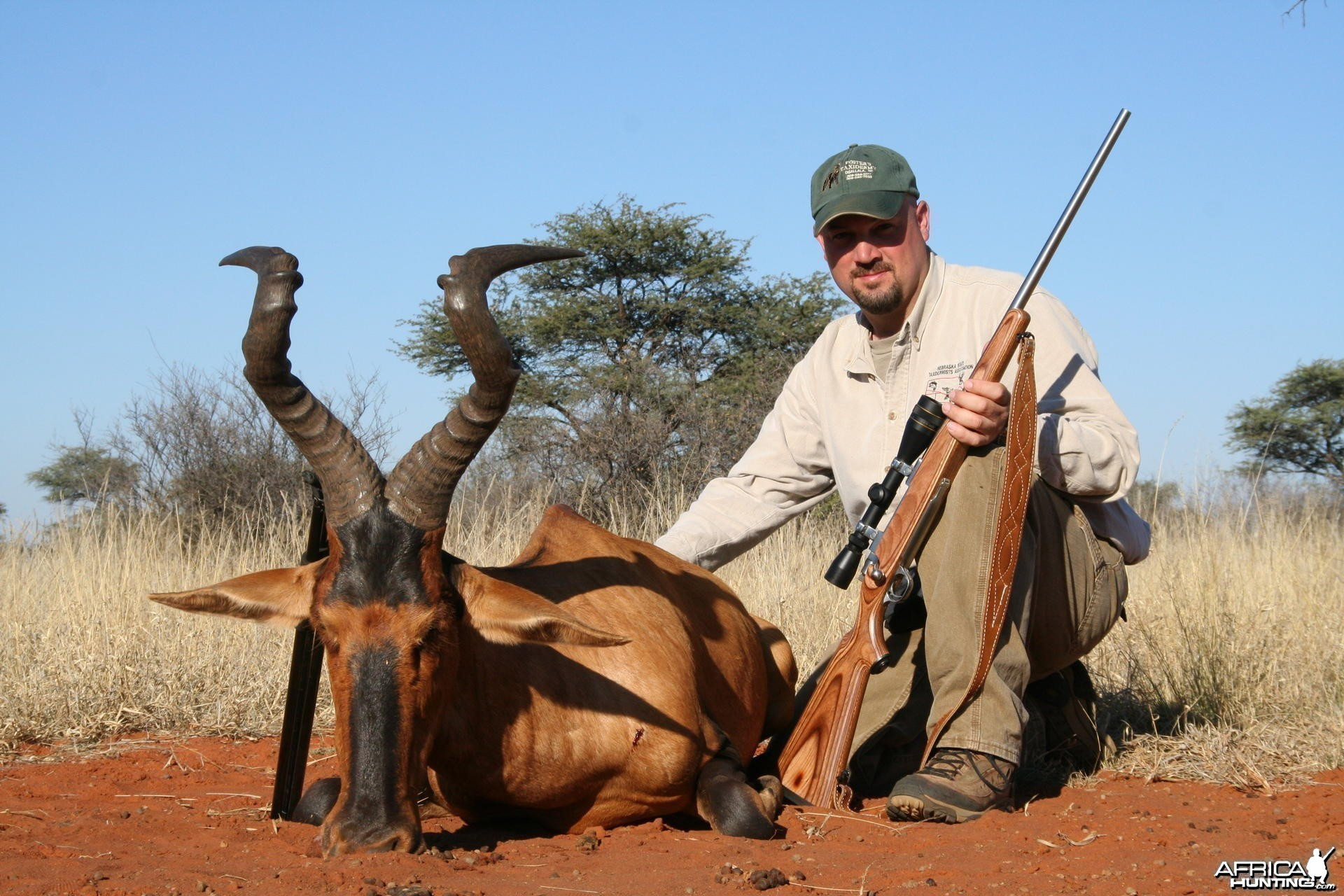 My monster South African Red Hartebeest