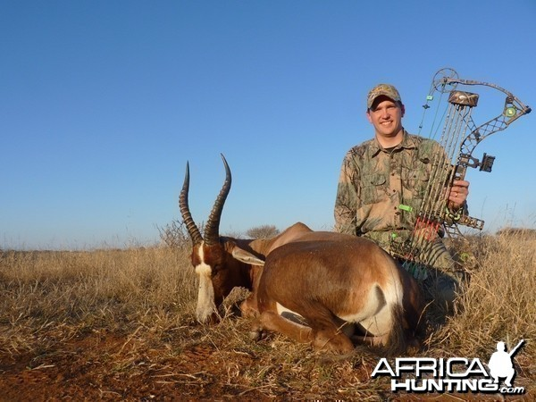 Bowhunting Blesbok South Africa
