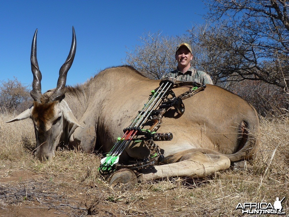 Bowhunting Eland South Africa