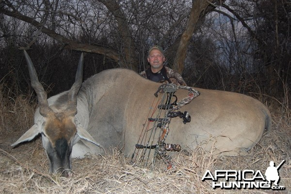 Eland bowhunt in South Africa