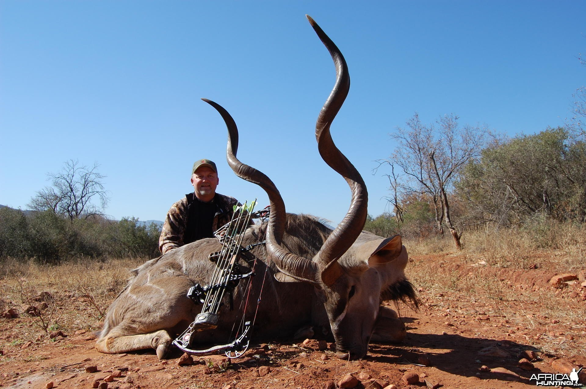 Kudu bowhunt in South Africa