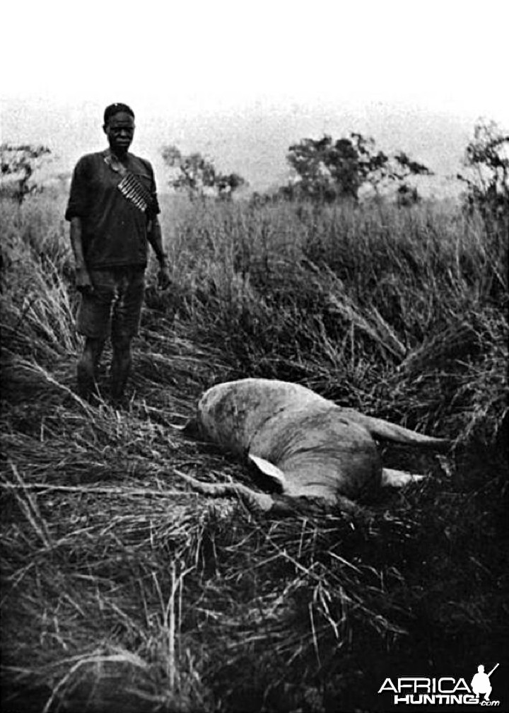 Chumamaboko standing by a Jackson's Hartebeest
