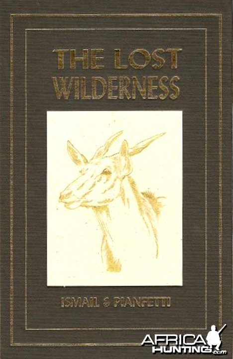 The Lost Wilderness by Mohamed Ismail and Alice Pianfetti