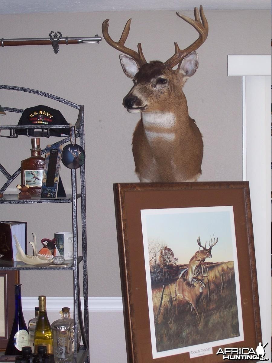 My dead head room
