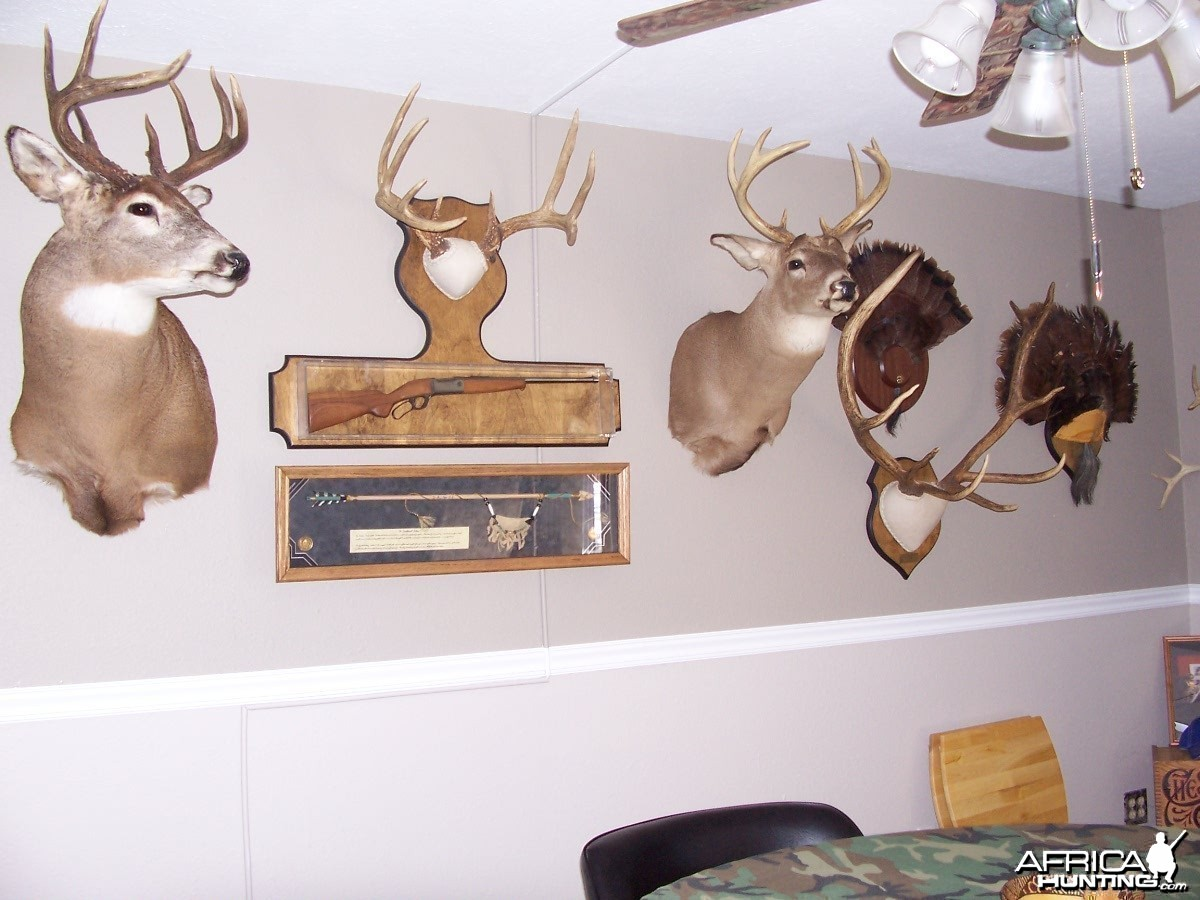 New Trophy Room