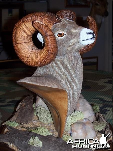Big Horn Sheep Wood Carving