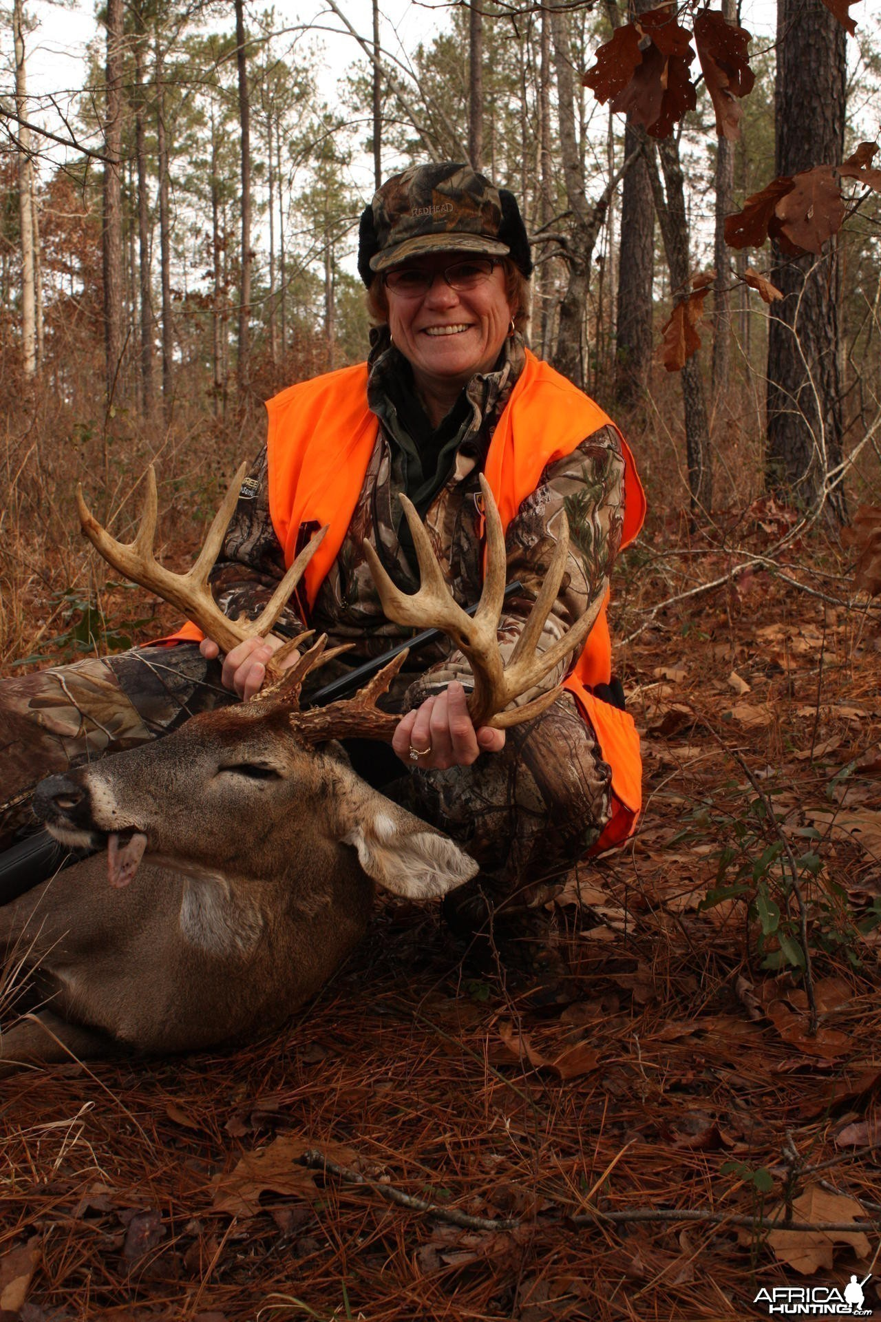 14 Point Whitetail hunted in Georgia