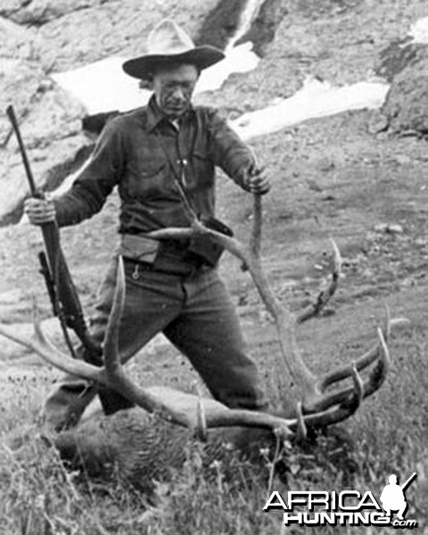 Jack O'Connor with Elk in Wyoming in 1944