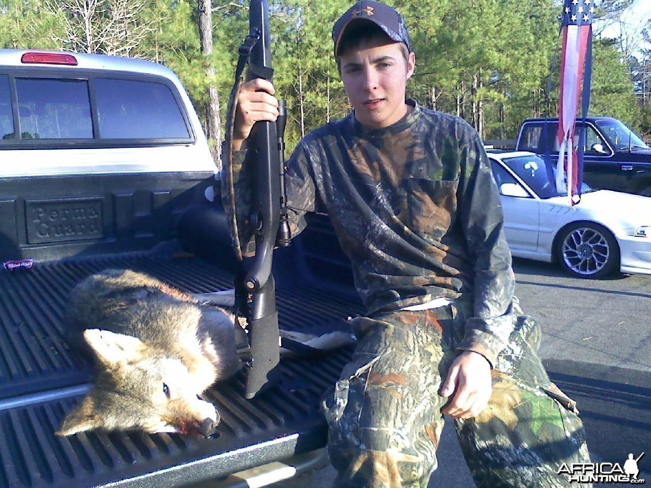 58 lb Coyote