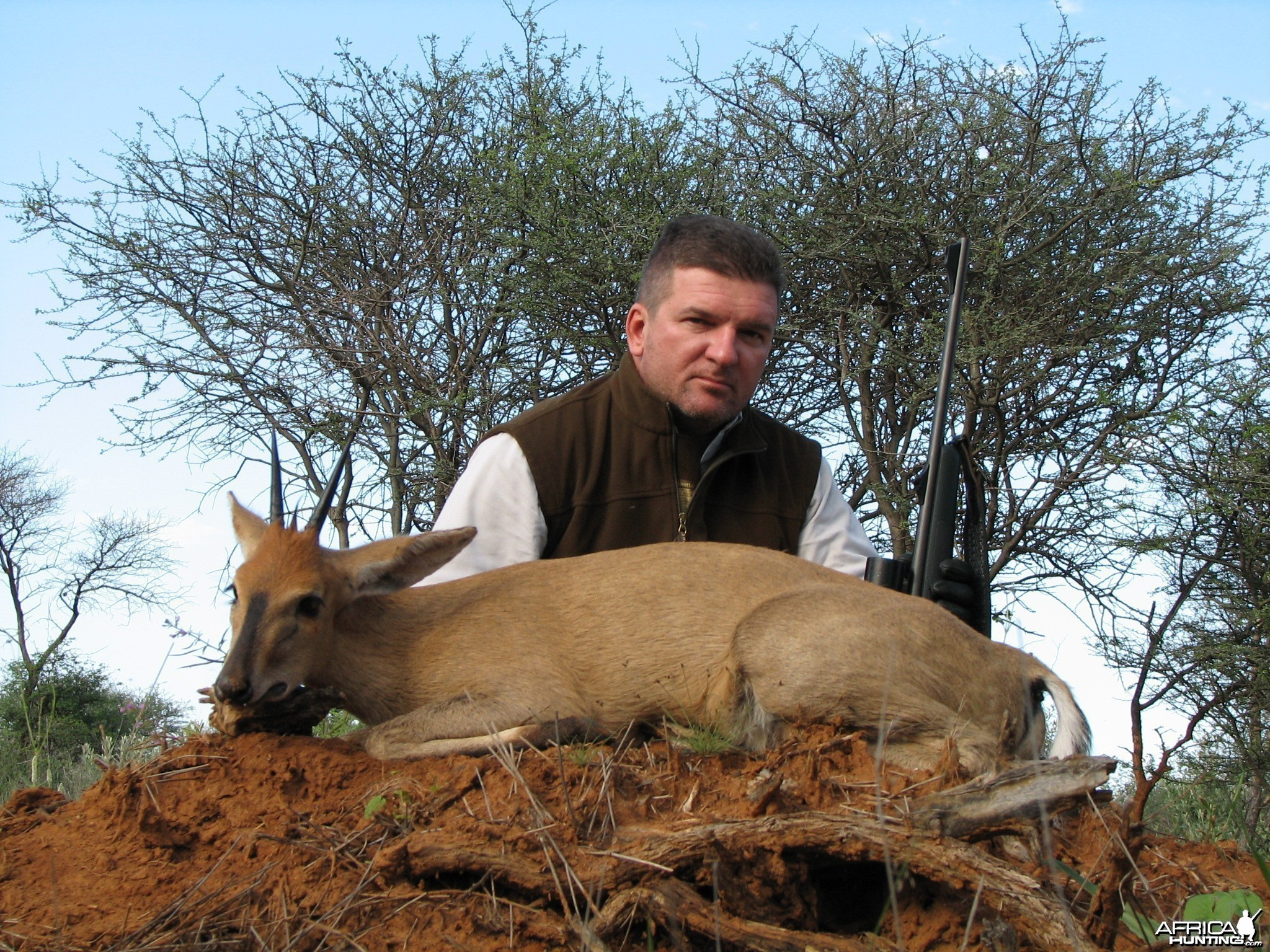 Hunting Duiker in Namibia