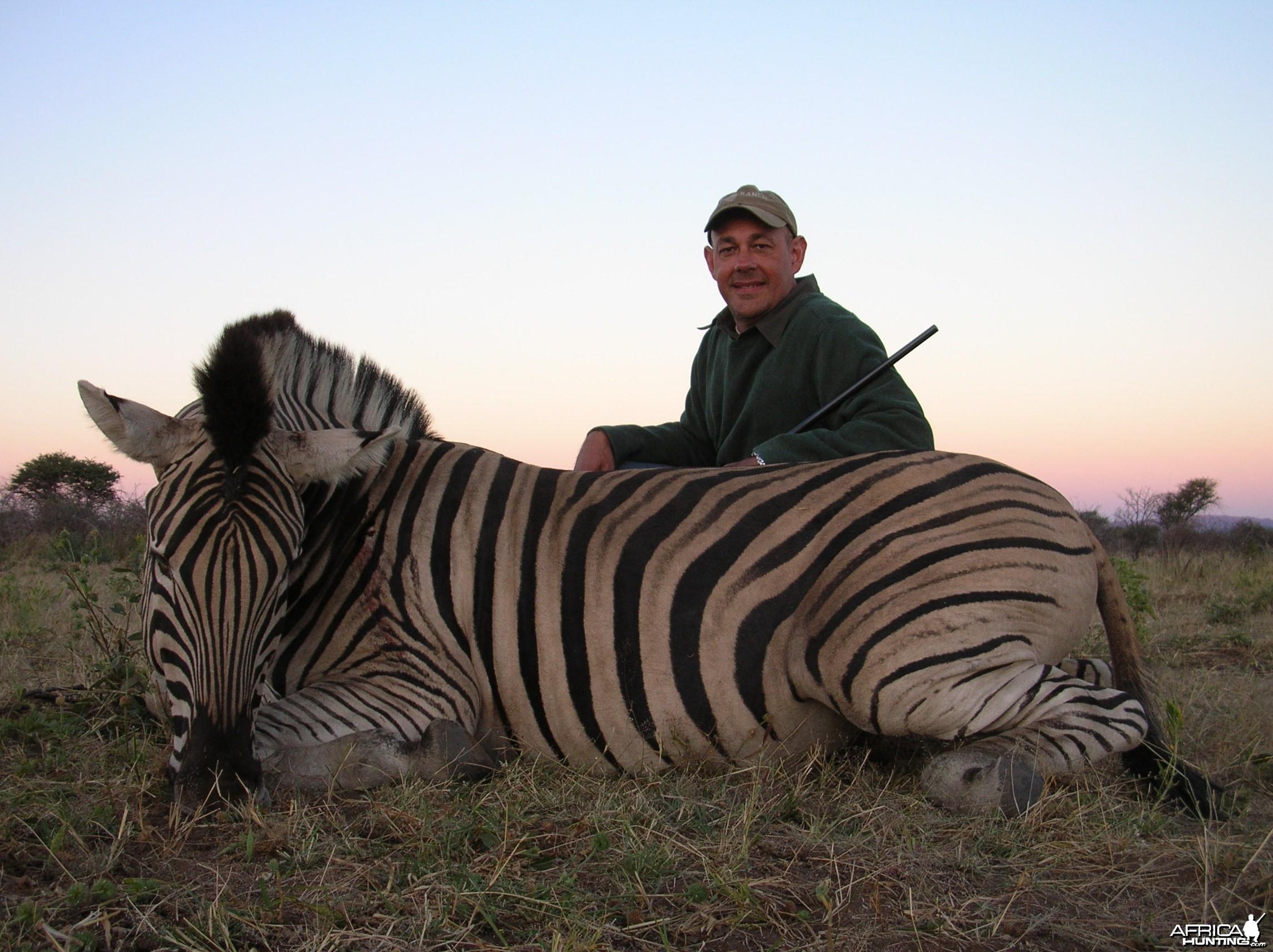Hunting Plain Zebra in Namibia