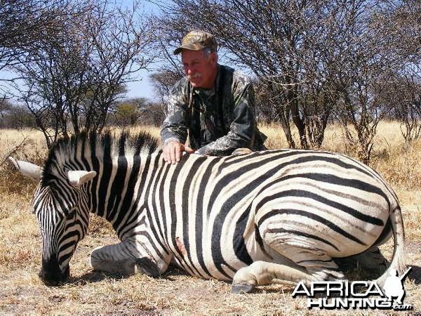 Hunting Zebra in Namibia