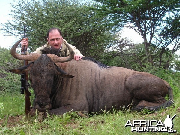 Hunting Wildebeest in Namibia