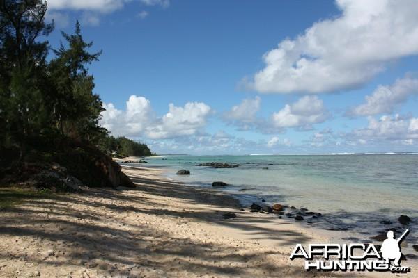 Moevenpick Resort in Mauritius