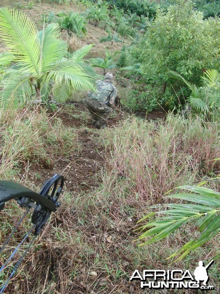On the stalk in Mauritius with Le Chasseur Mauricien