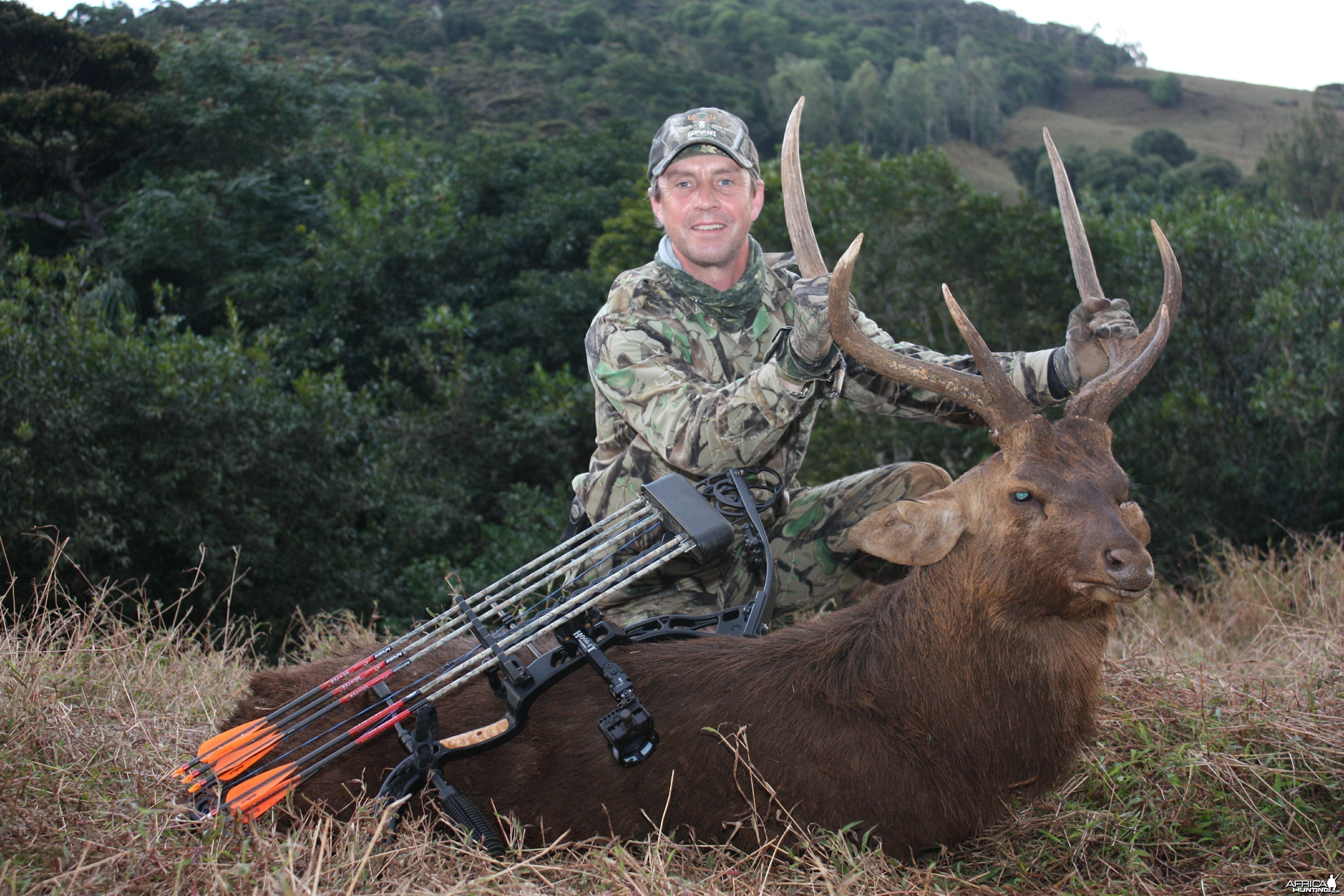 My Rusa Deer bowhunted in Mauritius with Le Chasseur Mauricien
