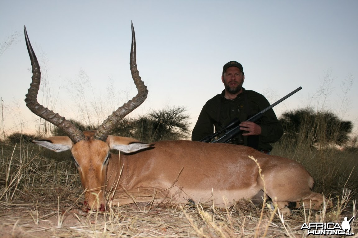 Impala hunt in Namibia