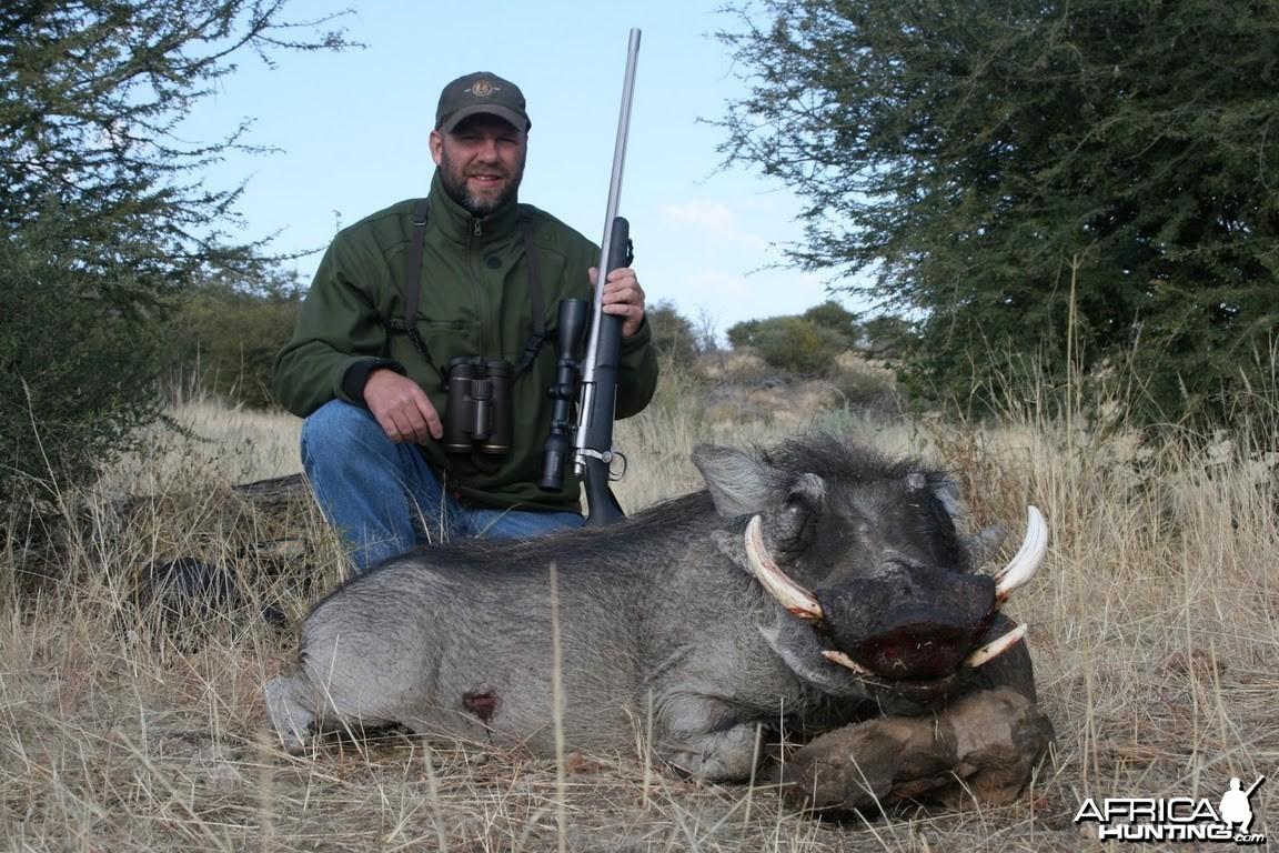 Warthog hunt in Namibia